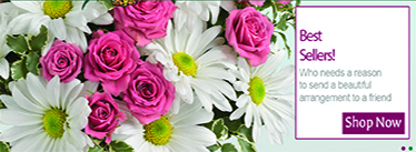stein_your_florist_featured_flowers